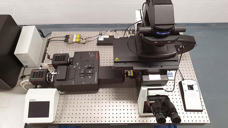Egyedülálló innováció a gyógyszerfejlesztésben, élvonalbeli mikroszkópos technológiával