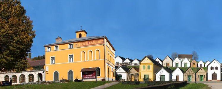Részvételi hozzájárulás mindössze 20.000 Ft, amely tartalmazza a 2 éjszakai szállást (www.hotelcabernet.hu), valamint a teljes ellátást (3 ebéd menü alapján, 2 büfé vacsora és 6 kávészünet) a festői Villányi borvidéken, Villánykövesden.