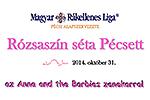 Rosafarbener Spaziergang in Pécs-Brustkrebsvorsorge